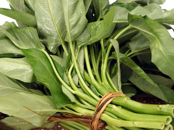 10 Must-Have Foods Rich In Iron