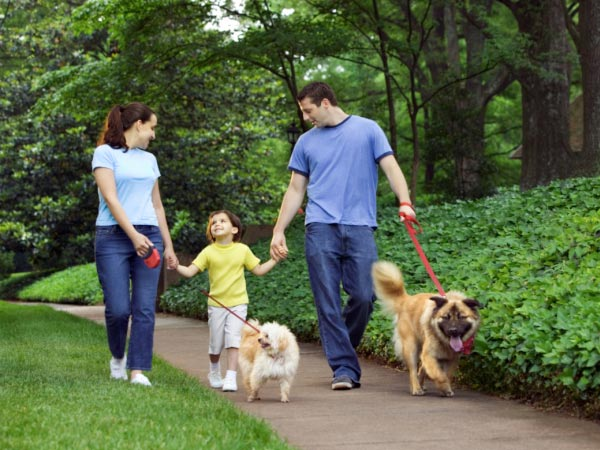 Go For A Walk With Pets And Kids