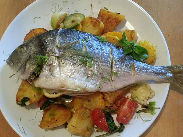 Types of fish that are unhealthy to eat for Best type of fish to eat