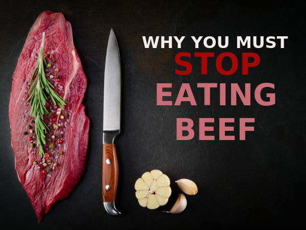 why stop meat eating? essay 2018-10-4 argument against eating meat many people don't believe think anything of what they eat or how it got there but the harsh truth is the meat that you eat was once a living, breathing creature that had feeling and emotions.