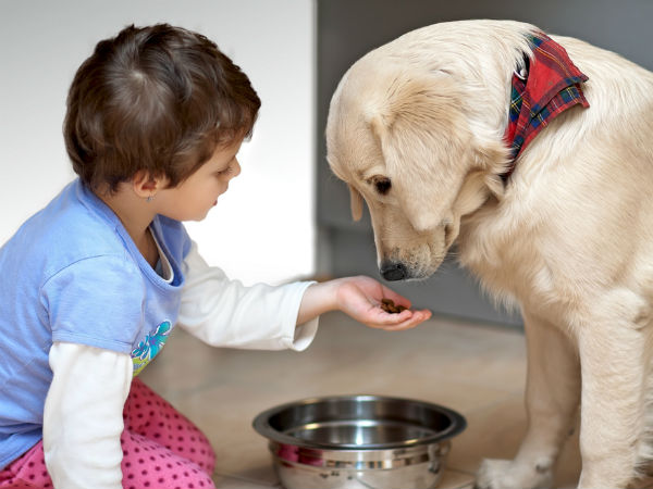How Pets Benefit Child Development3