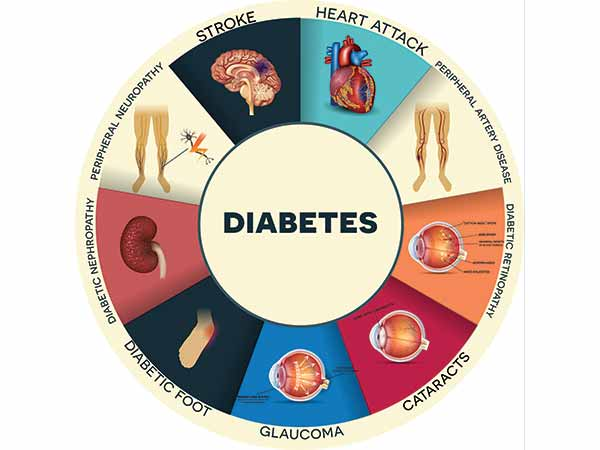 What Organs Does Type 2 Diabetes Affect?