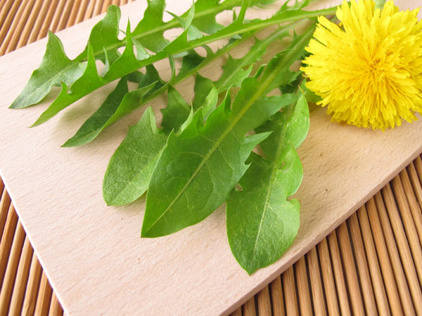 herbal remedy for cancer