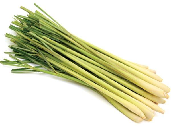 Benefits Of Lemongrass In Pregnancy