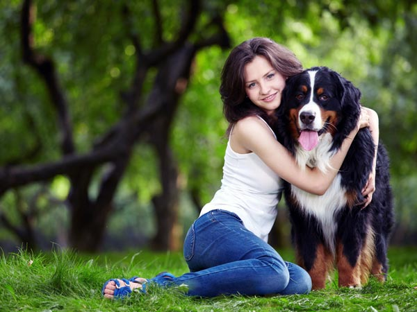 Why People Love Dog Over Other Pet Animals