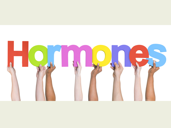 Twelve Ways To Balance Your Hormones