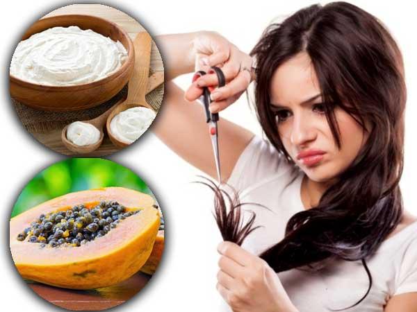 Diy Papaya And Curd Hair Mask To Reduce Split Ends