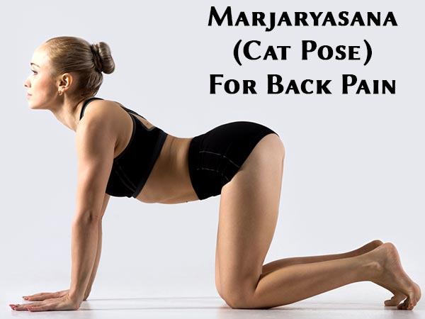 Marjaryasana Cat Pose For Back Pain