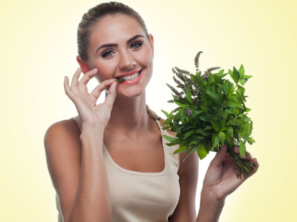best herb for women to conceive