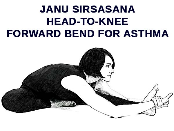 Janu Sirsasana For Asthma