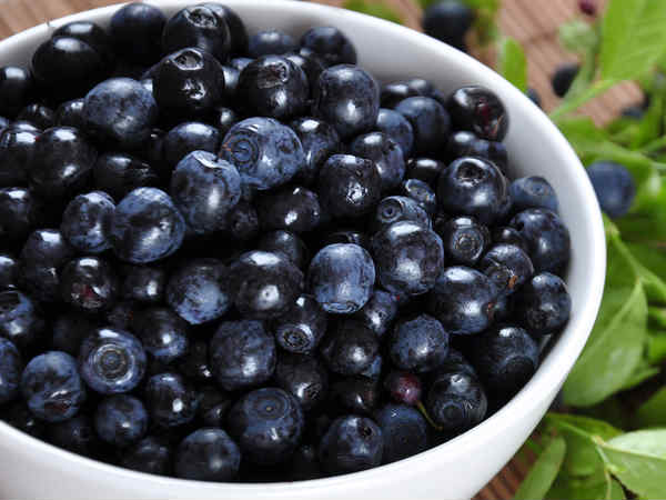 Do Blueberries Fight Age And Memory Loss