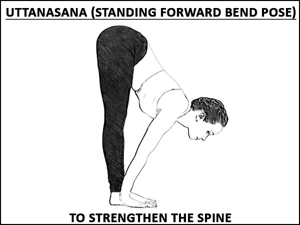 Uttanasana (Standing Forward Bend Pose) To Strengthen The Spine