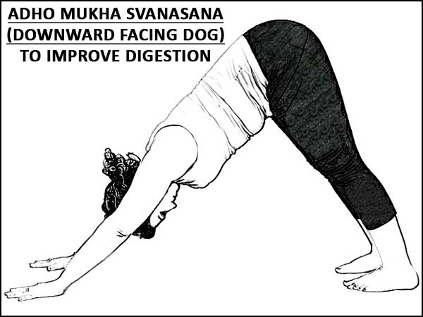 Adho Mukha Svanasana (Downward Facing Dog) To Improve Digestion