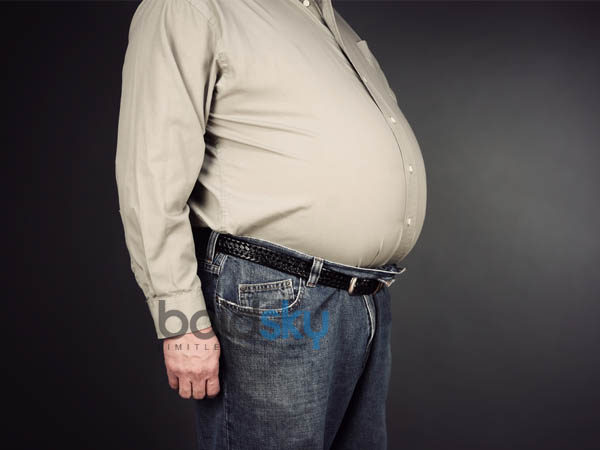 what are the main causes of abdomen fat