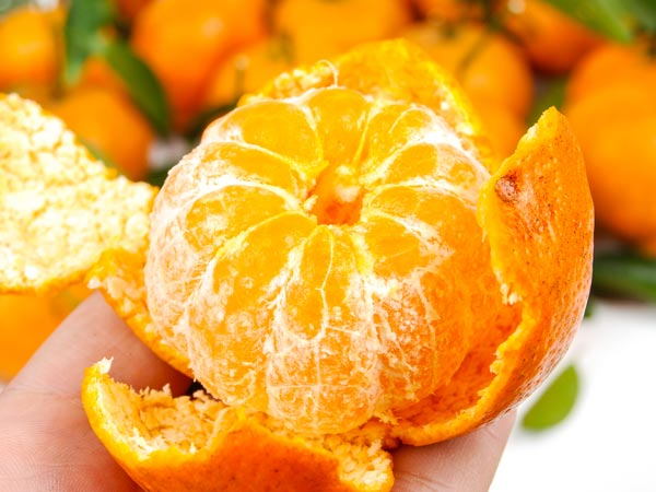 Eat Oranges & Keep Off Heart Disease, Diabetes Risk
