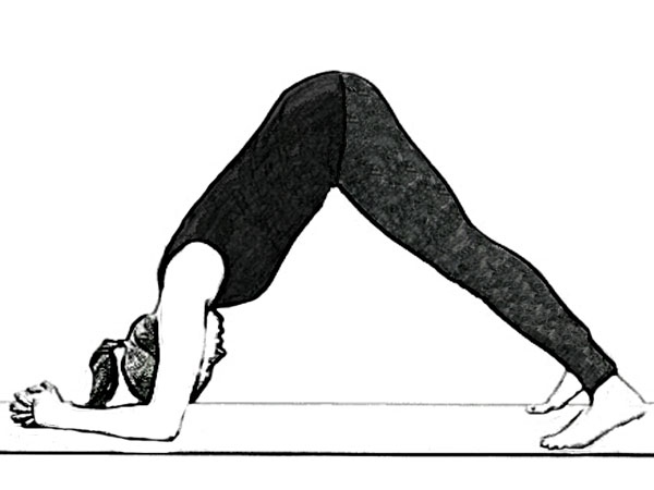 Ardha Pincha Mayurasana (Dolphin Pose) To Stimulate The Nervous System