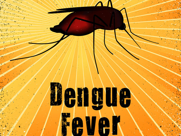 Interesting Facts About Dengue Fever
