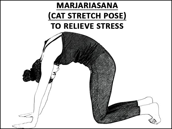 Marjariasana (Cat Stretch Pose) To Relieve Stress