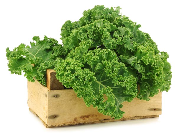Reasons you should eat kale