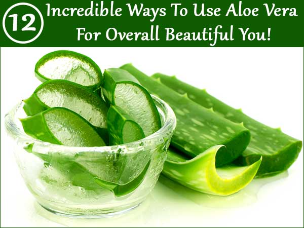 how to make homemade aloe vera shampoo