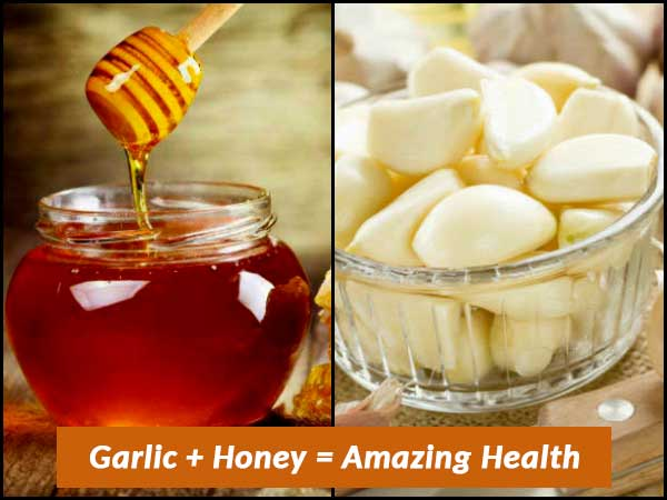 What Happens When You Drink Garlic Paste With Honey?