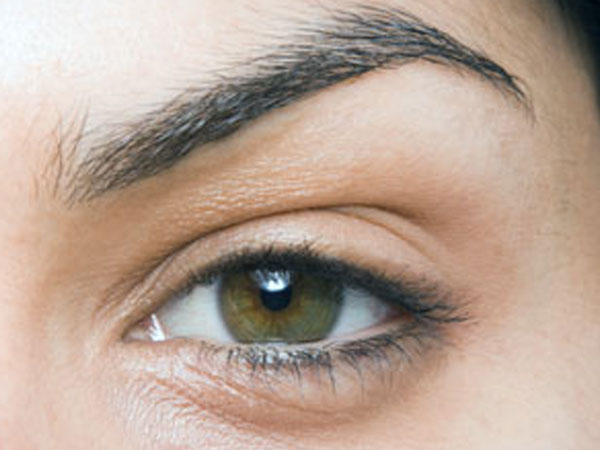 how to fill your brows