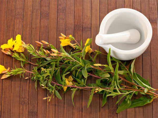 primrose oil for hair loss