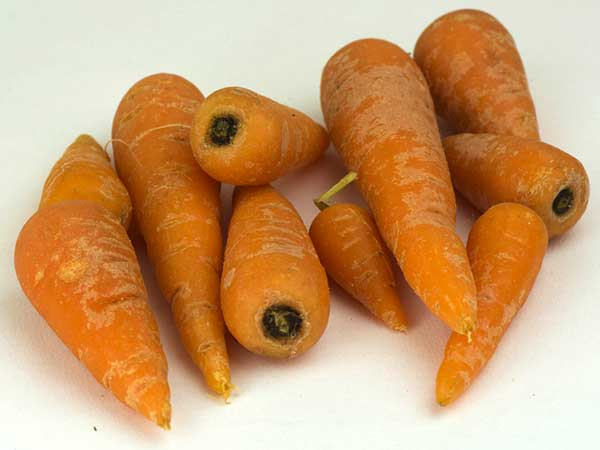 Why You Must Stop Eating Baby Carrots