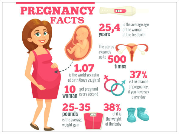 Fact #1. During pregnancy ...