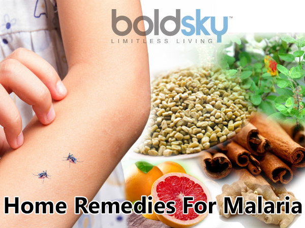 malaria home remedies