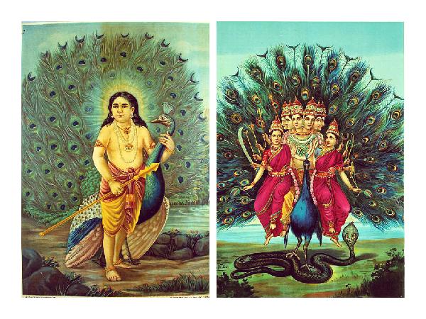 Sree Subramanya Swami Ashtakam