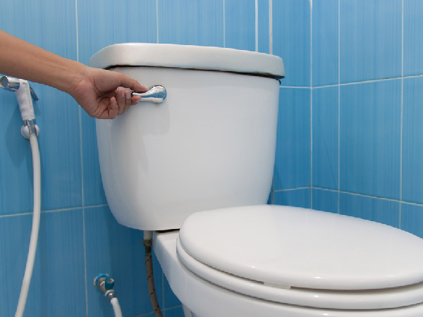 Toilet Cleaning Tips You Must Know
