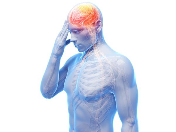 no evidence for limit on human lifespan: study - boldsky, Muscles