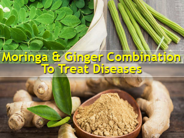 Combination Of Moringa & Ginger To Fight Several Deadly Diseases