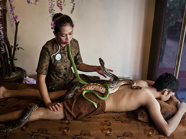 Heard About The Spa Where Snakes Give A Massage?
