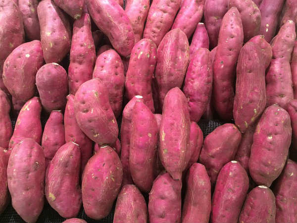 how purple potatoes are good for colon cancer