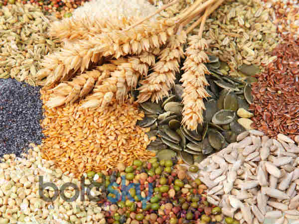 whole grains for colon cancer