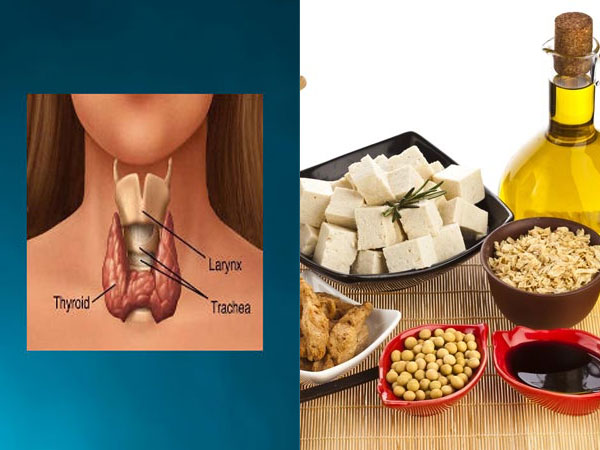 Foods That Help To Keep Your Thyroid Healthy