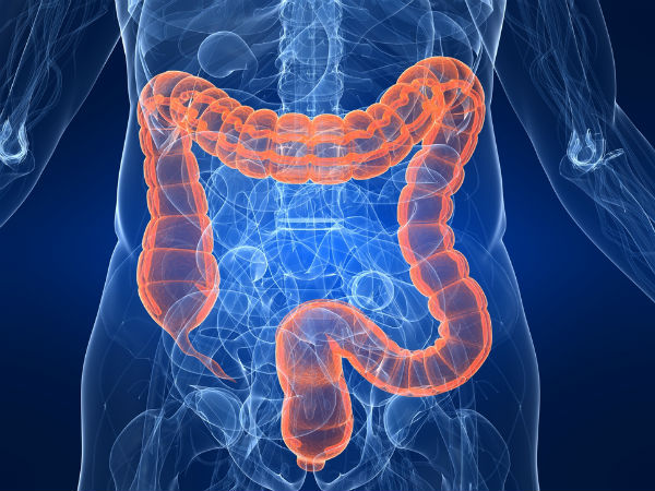 foods to fight colon cancer