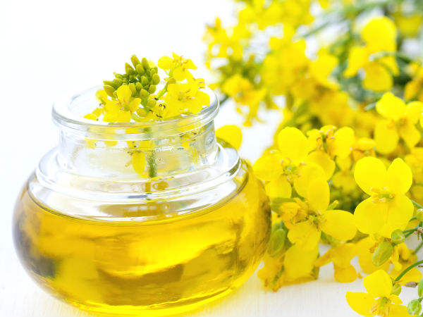 Canola Oil Can Harm Your Brain- Finds Study