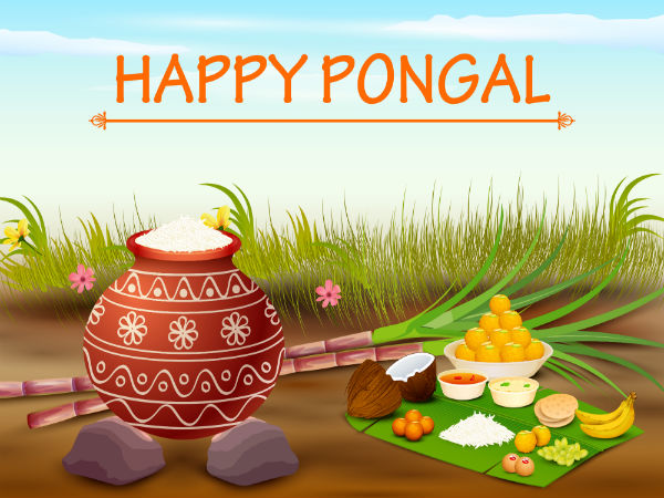 reasons why pongal is prepared on sankranti