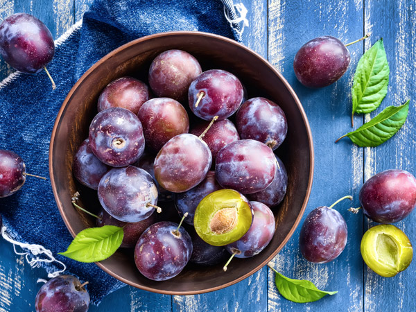 benefits of using plum oil for skin care