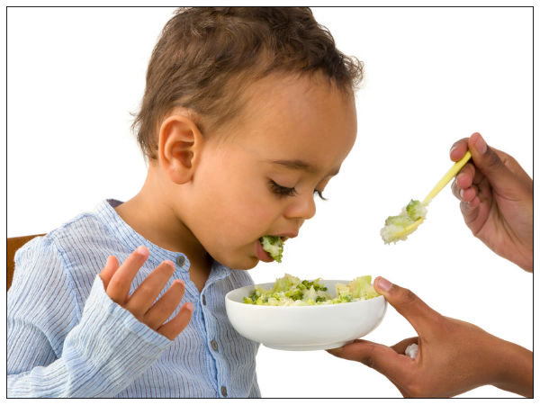 Baby Refuses To Eat Baby Food