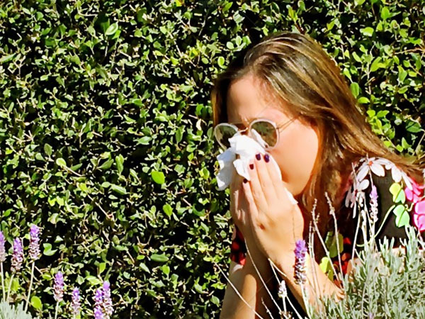 pollen allergy season