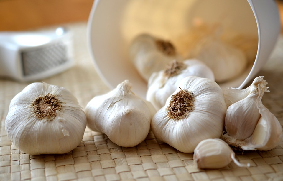 how garlic benefits your kids