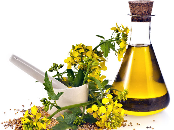 Beauty Benefits Of Mustard Oil You Didn't Know