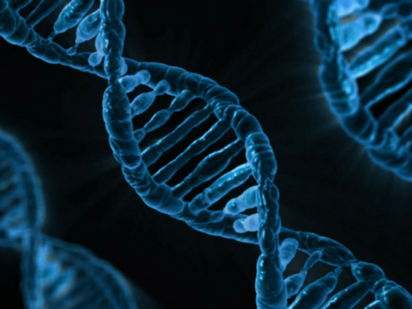 9 Common Genetic Disorders