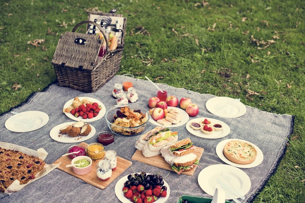 International Picnic Day 2018: How To Have A Healthy Picnic