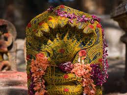 Nag Panchami Remedies For Rahu Dosha Based On Zodiac