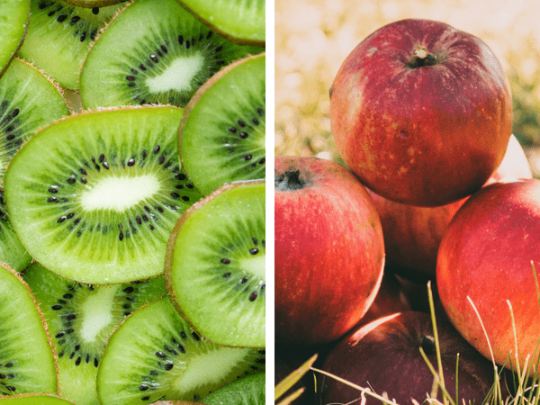 Fruits to eat when constipated